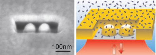 Catching individual molecules in a million with optical antennas inside nano-boxes