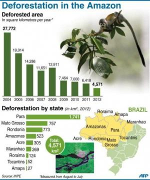 Chart showing rate of deforestation in the Amazon