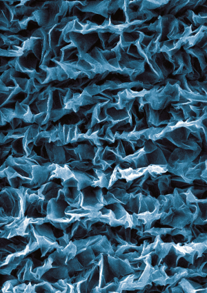 Controlled crumpling of graphene forms artificial muscle