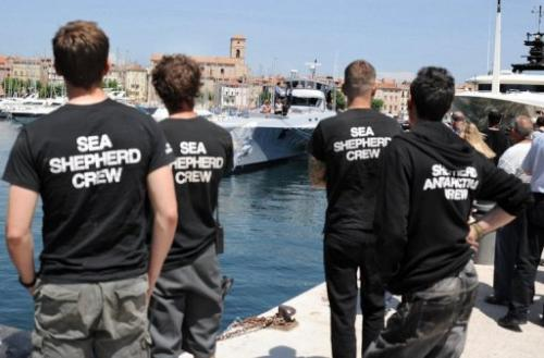 Crew of the Sea Shepherd Conservation Society, look at the Brigitte Bardot ship, on May 25, 2011 in La Ciotat, France.