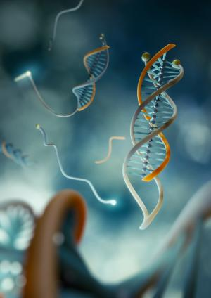 DNA clamp to grab cancer before it develops
