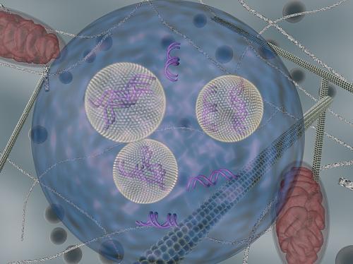 Enhancing RNA interference