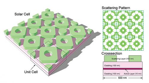 Evolution inspires more efficient solar cell design