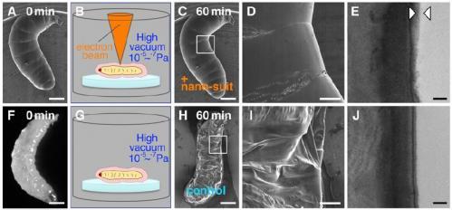 Nanosuits help small creatures survive a vacuum