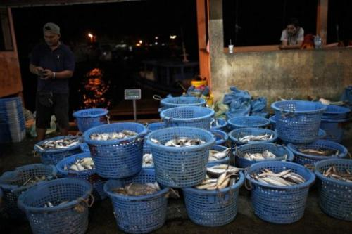 Fish dealers wait for customers at the Sandakan central fish market in Malaysia on February 4, 2013