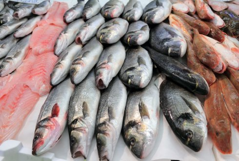 Fisheries-induced evolution adds a bonus to good management
