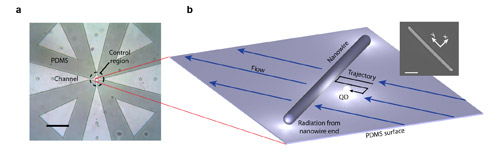 Flow control of single quantum dot enables measurements with nanoscale accuracy at lower cost