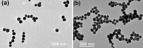 Freedom of assembly: Scientists see nanoparticles form larger structures in real time
