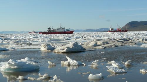 Global change: Stowaways threaten fisheries in the Arctic