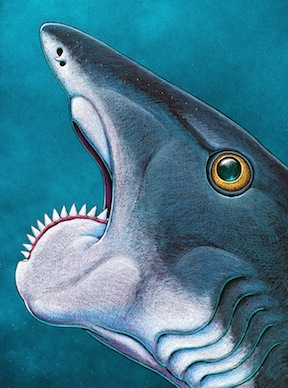 Helicoprion: Scientists solve mysteries of ancient 'shark' with spiral-toothed jaw