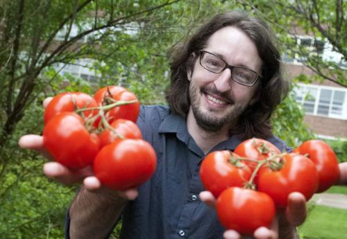 Historian studies quest for the 12-month tomato