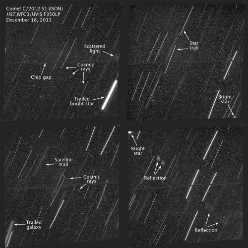 Hubble looks but finds no trace of comet ISON