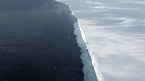 IceBridge wraps up successful Antarctic campaign