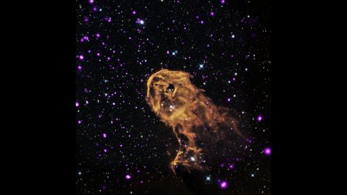 Image: Elephant Trunk Nebula