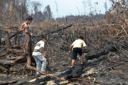 Indonesian children play on a burned peatland forest in Dumai, Riau province, on Sumatra island, June 28, 2013