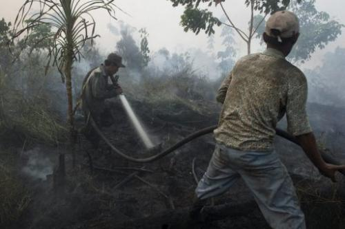 Indonesian workers from a palm oil company extinguish a forest fire in Kampar district, on Sumatra island, June 29, 2013