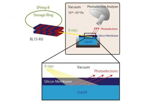 In situ tracking of electrochemical reactions at solid/liquid interfaces by photoelectron spectroscopy