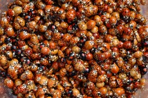 Ladybirds, biological weapons and the success of invasive species