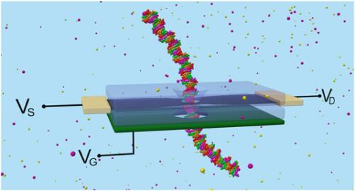 Through a nanopore, ionically: Graphene quantum transistor for next-generation DNA sensing