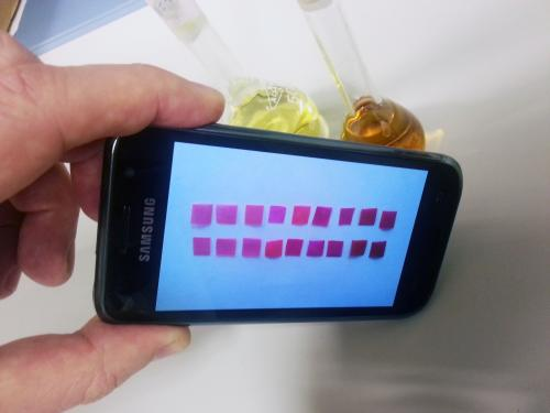 Mercury contamination in water can be detected with a mobile phone