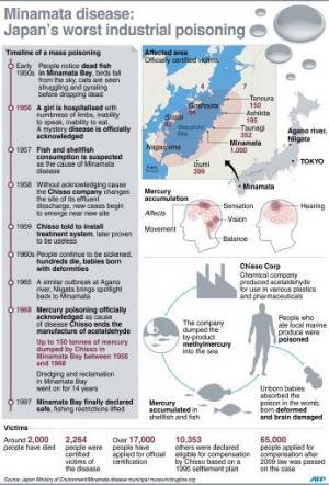 Minamata disease