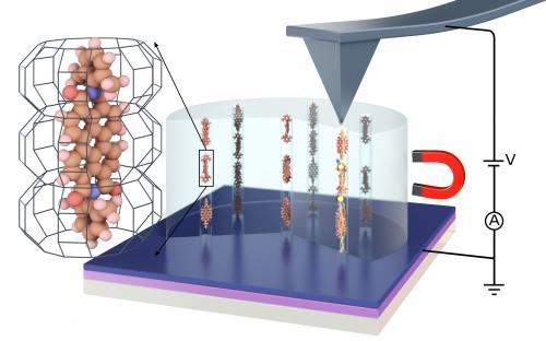 Molecular chains hypersensitive to magnetic fields