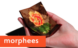 Morphees: Shape-shifting mobile devices (w/ Video)