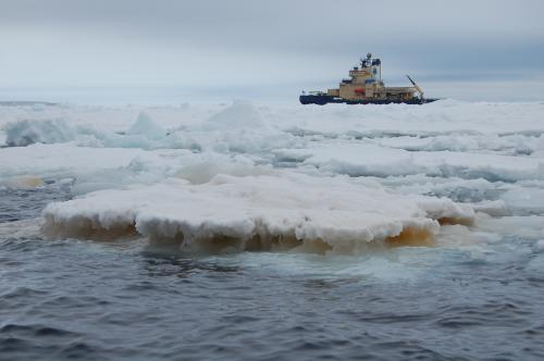 Moving iron in Antarctica
