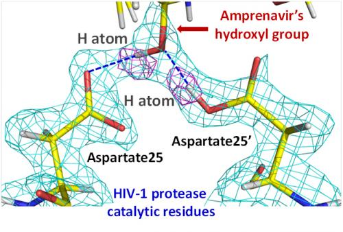Neutron studies of HIV inhibitors reveal new areas for improvement in drug design to enhance performance, combat resistance and