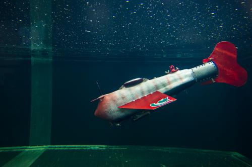 New robotic fish glides indefinitely