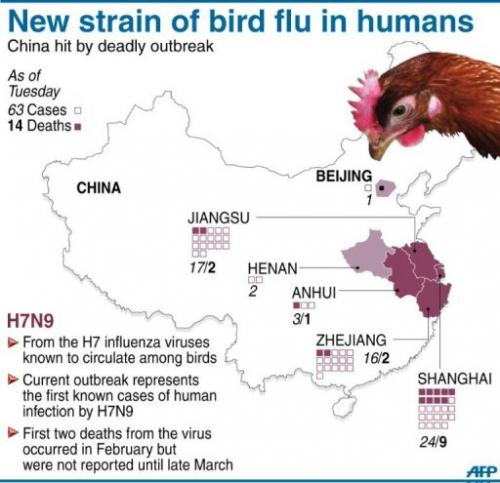 New strain of bird flu in humans