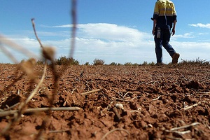 Pilbara water and climate prospects examined