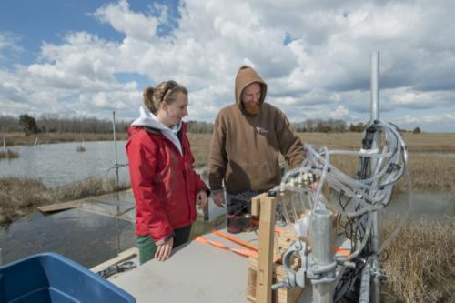 Protecting tidal wetlands: Scientists study tidal flow, sediment movement in salt marsh