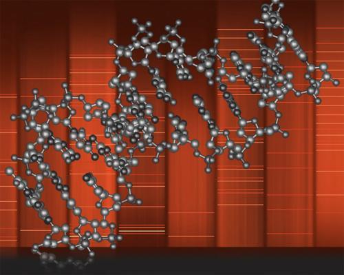 Reading DNA, backward and forward