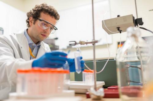 Ribosome research takes shape