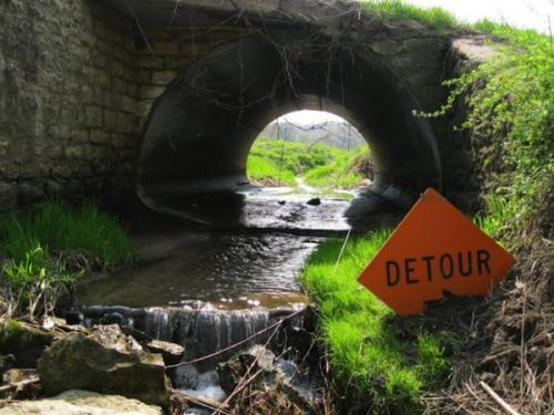 Road block: fixing aquatic ecosystem connectivity doesn't end with dams