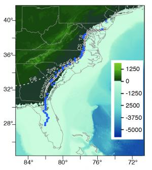 Scientist finds topography of Eastern Seaboard muddles ancient sea level changes
