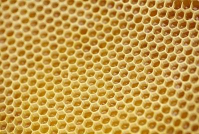 Secrets of bee honeycombs revealed