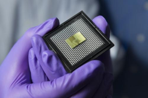 Sensor on a chip: New technology holds potential for monitoring ecosystem, human health