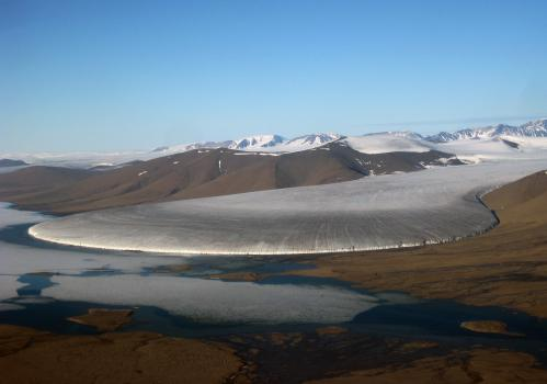 Significant contribution of Greenland's peripheral glaciers to sea-level rise