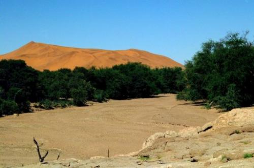 The dry bed of the Kuiseb River in the Namib Desert, on June 15, 2008, in Namibia