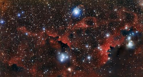 The wings of the Seagull Nebula