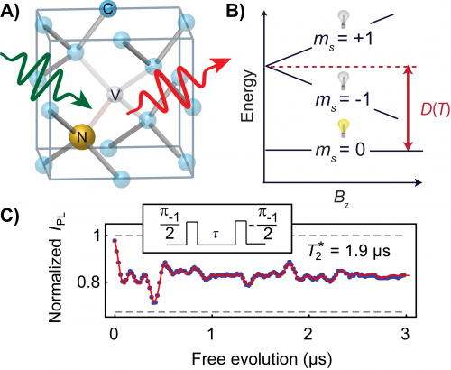 A physicist's best friend: Quantum coherence in diamond augments fluorescence thermometry