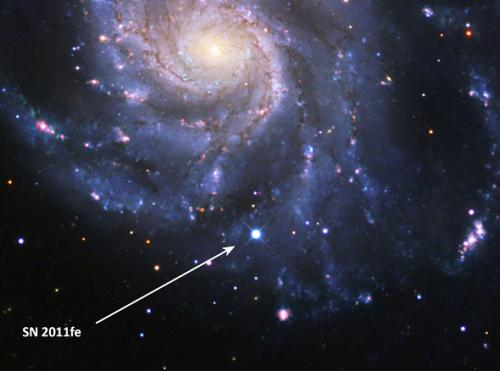Unusual supernova is doubly unusual for being perfectly normal