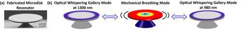 Wideband wavelength conversion using cavity optomechanics