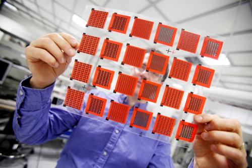 Полимеры могут проявлять свойства полуметаллов