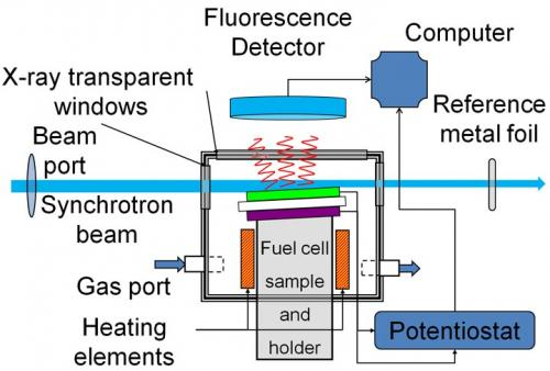 X-rays reveal fuel cells in action