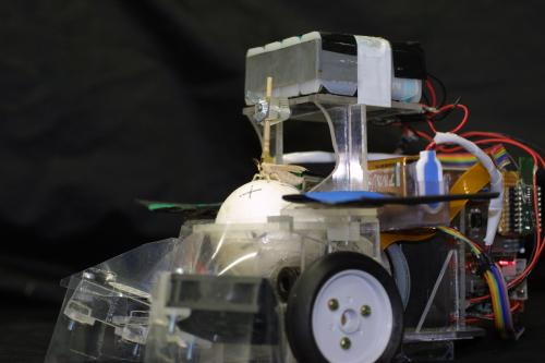 Insect drives robot to track down smells (w/ video)