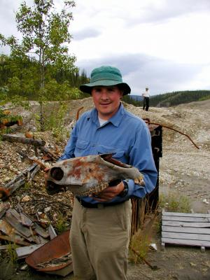 Yukon gold mine yields ancient horse fossil