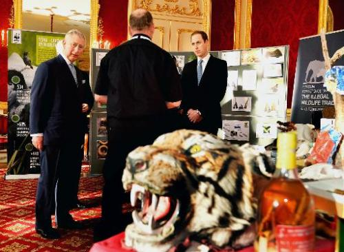Britain's Prince William, Duke of Cambridge (R) and Britain's Prince Charles, Prince of Wales (L) take a tour of an exhibition a